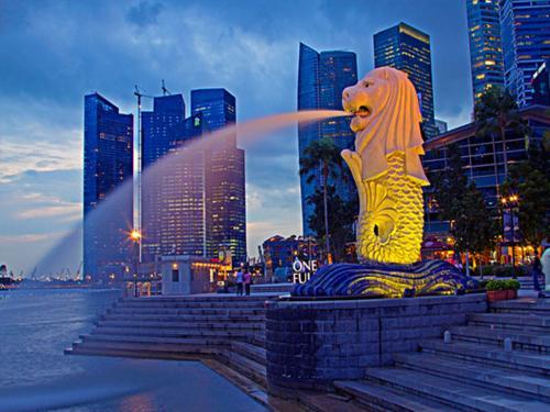 新加坡公司的优势